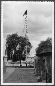 Flaggenmast-SVW--1 web