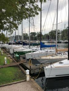 Auf drei Seiten der Inseln und in kleinen Kanälen liegen die Boote der Mitglieder.